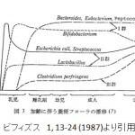 光岡グラフ