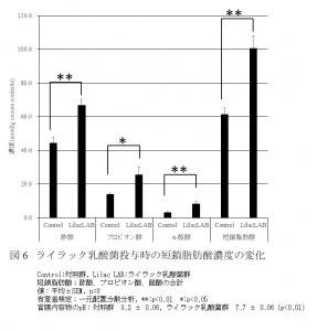 ライラック乳酸菌の動物実験での生成短鎖脂肪酸量